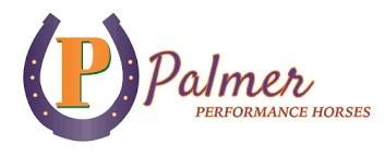 Palmer Performance Horses
